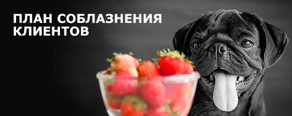 ПЛАН СОБЛАЗНЕНИЯ КЛИЕНТОВ